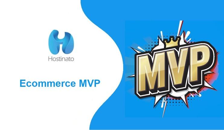 Ecommerce MVP
