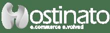 Ecommerce Agency Hostinato