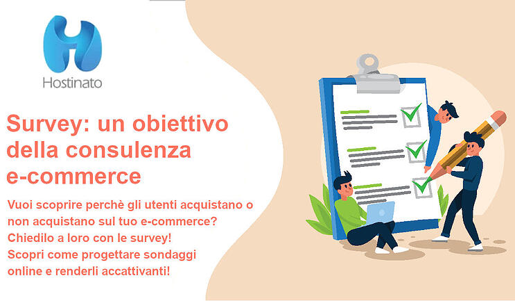 survey ecommerce