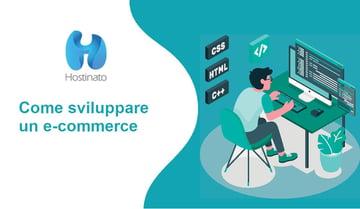 sviluppare un e-commerce